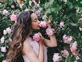 Růžová zahrada potřebuje v létě uklidit i podpořit k dalšímu květu.