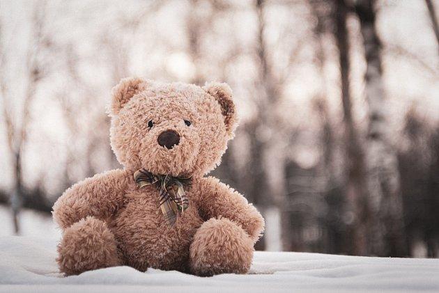 Plyšové hračky i lůžkoviny můžete vystavit teplotám pod bodem mrazu. Ideálně až na 48 hodin.