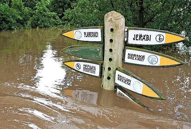 V době přípravy rozhovoru zasáhly Zoo Praha ničivé povodně.