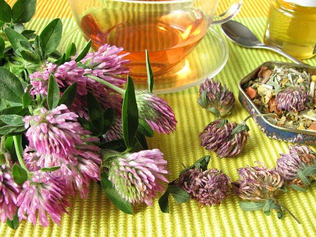 Nálev z květů jelete má příjemnou chuť