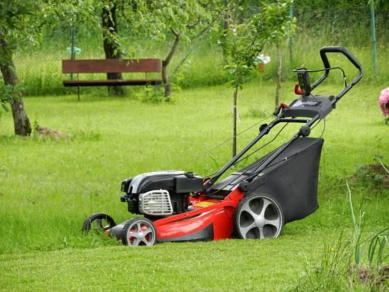 Vysekáním celé zahrady na nízký pažit zahradě nepomůžeme.