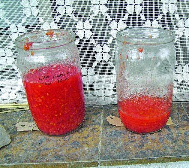 Rajčatové zákvasy v kompotových sklenicích