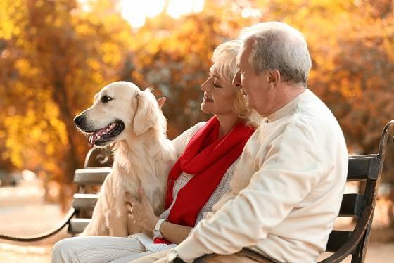 Pes pro seniory často znamená pádný důvod k tomu, aby se udržovali v kondici.
