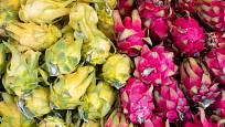 Pitahaya, dračí ovoce, se nejčastěji prodává žluté nebo červené.