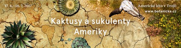 Kaktusy a sukulenty Ameriky
