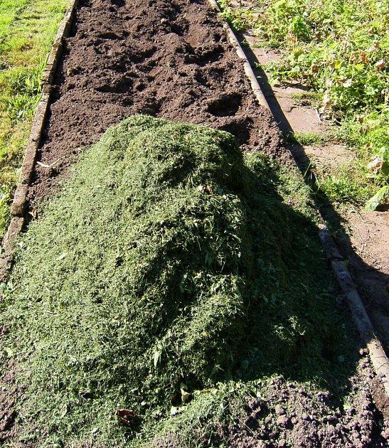 Příprava půdy a zapravení živin je nutností.