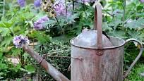 Konve s děravým dnem a zrezivělým povrchem jsou skvělými sběratelskými kousky ve vintage zahradách.