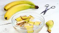 Vyluhováním banánových slupek můžeme připravit hnojivo.