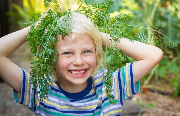 K zábavě stačí třeba i mrkvová nať