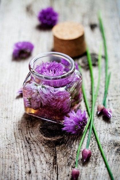 Udělejte si vlastní ocet z pažitkových květů.