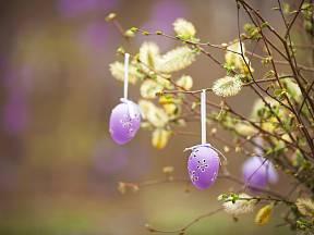 Atraktivní velikonoční dekoraci vytvoříte v zahradě z vrby.