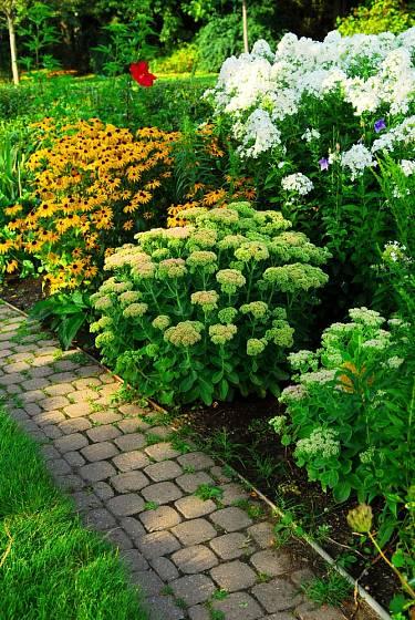 Zahradní cestičky mají různou šířku i délku.
