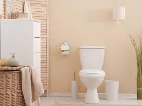 Víte, jak levně provonět toaletu?