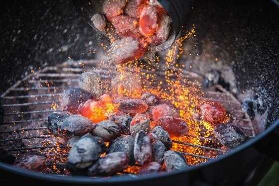 Dřevěný popel z ohně či grilování poslouží jako hnojivo pro zahradu