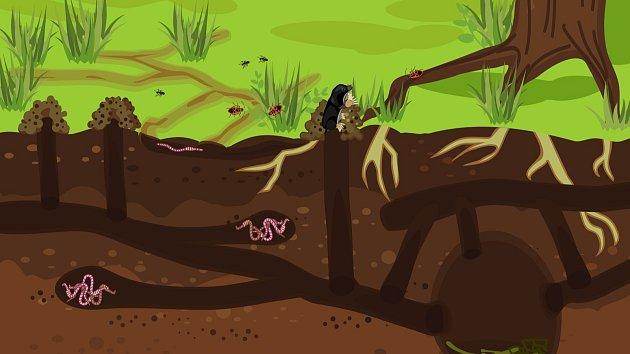Krtek žije v podzemních chodbách, které si vyhrabává výrazně velkými a silnými tlapami.