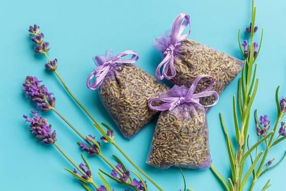 Sáčky naplněné sušenou levandulí se používají na odpuzení šatních molů.