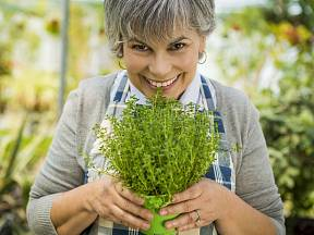 Vůně bylinek uklidňuje i léčí.