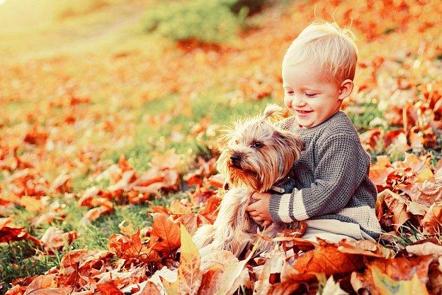 Je-li dítě od malička správně vedeno, vytvoří se mezi ním a psem silné pouto.