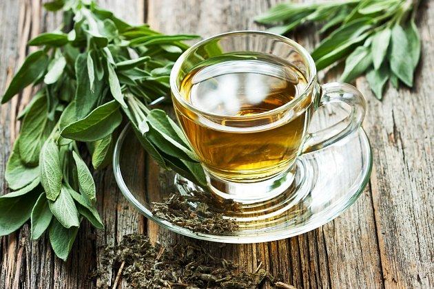Šalvěj je léčivá bylina, z které si můžete udělat skvělý čaj.
