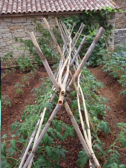 detail konstrukce rajčatového stanu