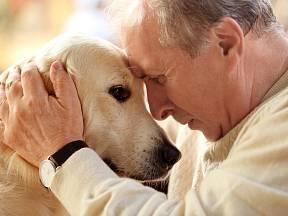 Láska mezi lidmi a psy kvete v každém věku.