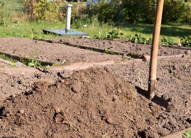 Téměř rozložený kompost půdu obohatí o velké množství živin.