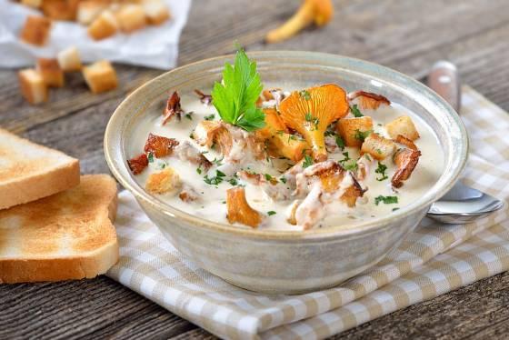 Lišky jsou výtečné v mléčné polévce i na smetaně