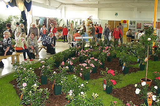 Návštěvníci v expozici růží