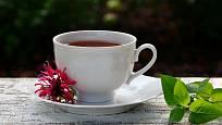 Čaj z listů monardy voní po bergamotu a má lahodnou chuť