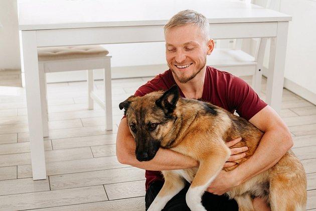 Psi se k nám dokážou vrátí i z velké dálky, když se ztratí