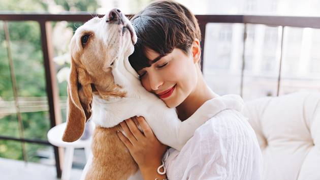 Zjistěte, s jakým psím plemenem souzníte podle zvěrokruhu!