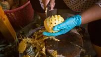 Podobným způsobem porcují ananas pouliční prodavači v Asii