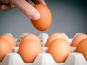 Hromadí se vám doma papírové kartony od vajec? Určitě je nevyhazujte!