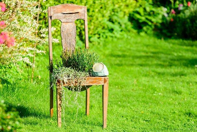 Židle, na kterou se usadily bylinky nahrazuje klasickou pěstební nádobu.