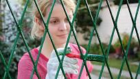Natírat plot štetcem je velice zdlouhavé - rychlejší je váleček