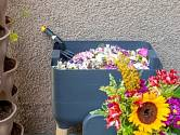 Kdo je manuálně zručný, může si dokonce vyrobit vermikompostér sám a minimalizovat náklady.