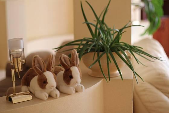 Dvojice roztomilých plyšových králíčků udělá dětem velkou radost.