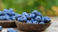 Plané i zahradní borůvky patří mezi nejzdravější ovoce