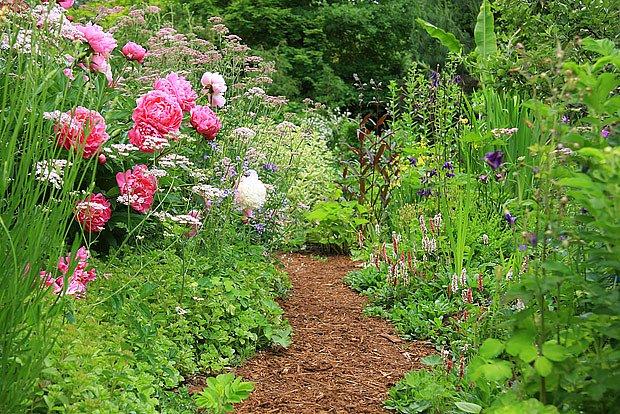 V přírodní zahradě symetrii řešit nemusíte