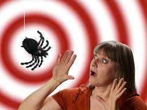 Arachnofobie je jednu z nejrozšířenějších fobií ze všech
