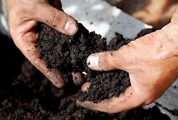 kvalitní zahradní zemina