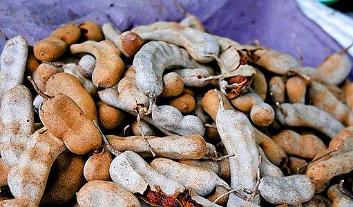 tamarind indický