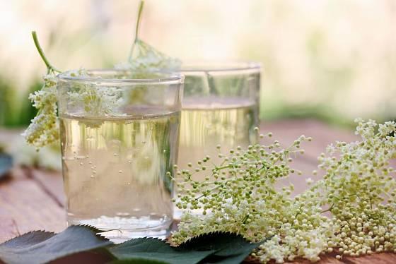 Voňavý bezový květ se hodí na přípravu léčivého nálevu i oblíbených limonád