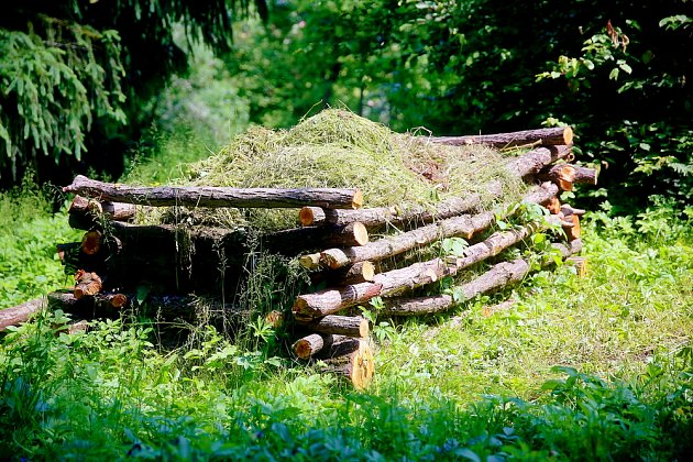 Kompost je základ úrodné a zdravé zahrady