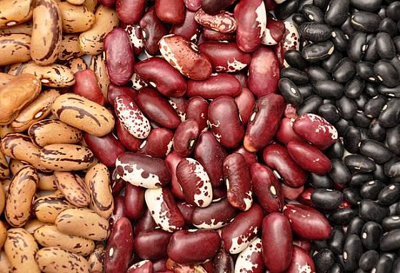 Semena fazolí jsou pestrá