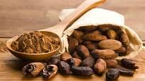 Kromě čokolády a kakaového prášku dnes můžeme v některých obchodech zakoupit i celé kakaové boby