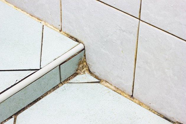 Dlouho nečištěné spáry v koupelně působí nevábným dojmem.