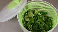 Omytý salát zbavíme přebytečné vody s pomocí odstředivky.