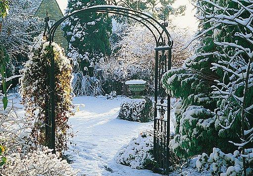 zahrada s atmosférou