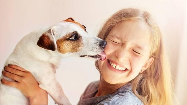 Pes a člověk jsou především partneři.